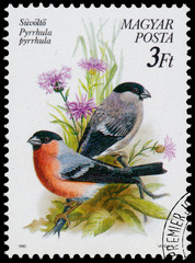 Stamp printed in Hungary shows Bullfinches