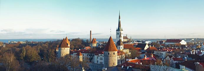 View of Tallinn from a survey platform