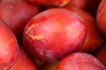 Some of red plum, close up, DOF
