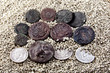 old coins on white sand