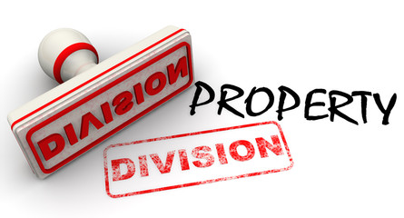 Раздел имущества (division of property). Концепция