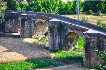 Coria, Cáceres, cultivos bajo el puente antiguo del río Alagón