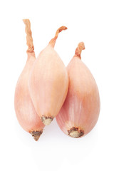 Shallot onions group on white, clipping path