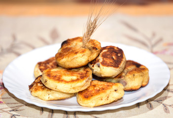 Fried curd fritters decorated with oat ear top on white plate