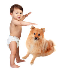 Beautiful baby in diaper with a brown dog