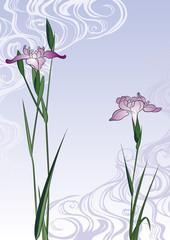 歌川広重 堀切の花菖蒲のイメージイラスト
