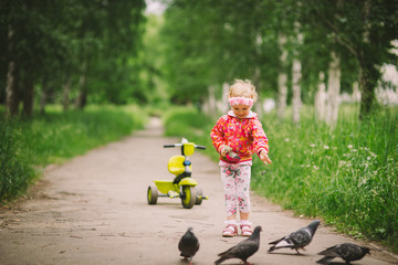 the little girl feeds pigeons 24