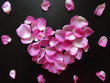 canvas print picture - pink heart made of rose petals on a black background