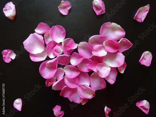 canvas print picture pink heart made of rose petals on a black background