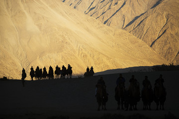 silhouette of caravan travellers riding camels Nubra Valley