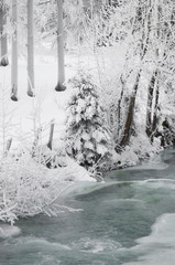 Österreich, Salzburger Land, Winterlandschaft