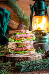 Sandwich with meat and vegetables for Lumberjack