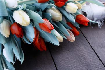 Tulpen auf Birke