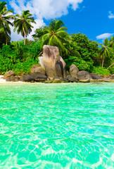 Paradise Peace Exotic