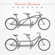 Tandem bicycle - 76097542