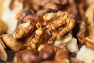 Fistful of Walnuts