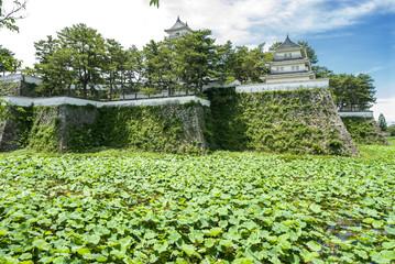 島原城とお堀