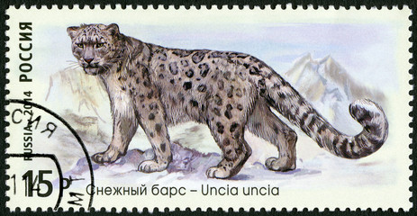 """RUSSIA - 2014: shows snow leopard, series """"The Fauna Of Russia"""""""