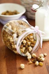 Bran and oats homemade granola