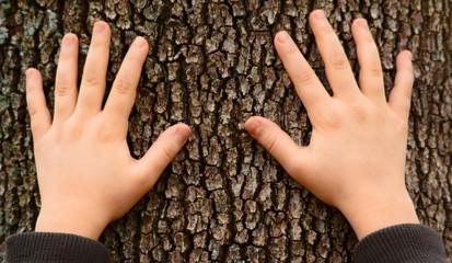 ağaçlara el sürmek