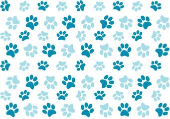 impronte cane azzurre