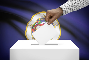 Ballot box with US state flag on background - Minnesota