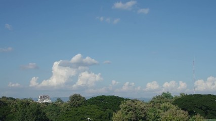 time-lapse of cloud over the tree canopy in the clearly sky day