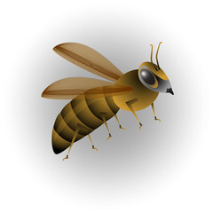 illustration of a bee