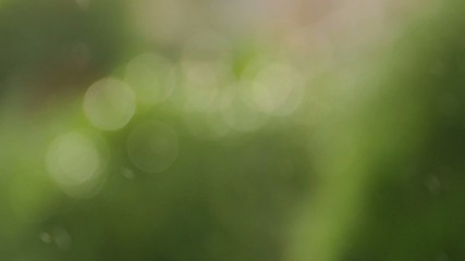 Light rain blurred background