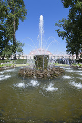 "Fountain ""Sheaf"" in Pertergof, Saint-Petersburg, Russia"