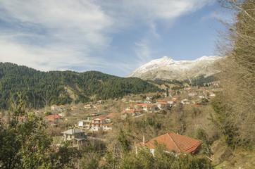 Athamanio Artas - Alexis Tsipras village