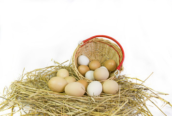 hen 's eggs, nest, basket