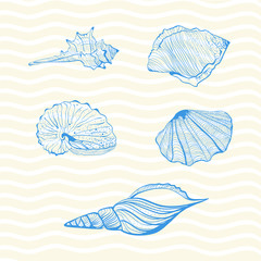 Set of six blue sea shells on wave background