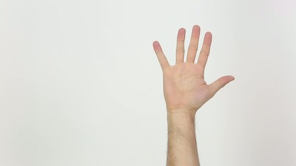 Single Hand Gestures. White Background