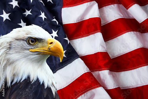 Fotobehang Eagle North American Bald Eagle on American flag