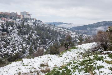 Jerusalem snowing 2015.