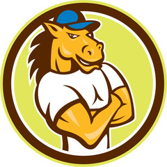 Horse Arms Crossed Circle Cartoon