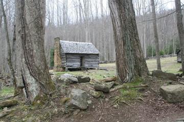 Gatlinburg log cabin
