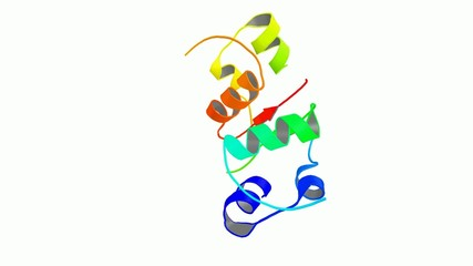 Insuline molecule 3d structure.