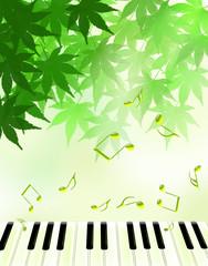 音楽を奏でる