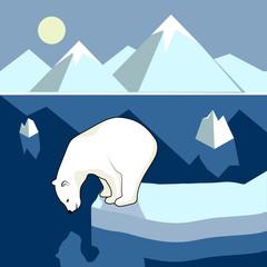 Polar bear on an ice floe, polar landscape.