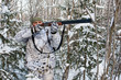 hunter takes aim from a gun in the snowy forest