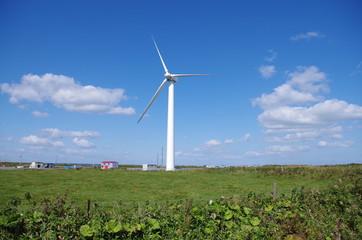 風車のある草原