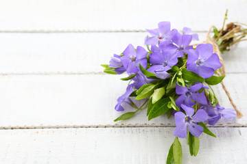 Spring bouquet of periwinkle on white boards