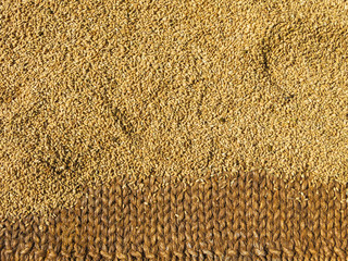 Brown rice drying