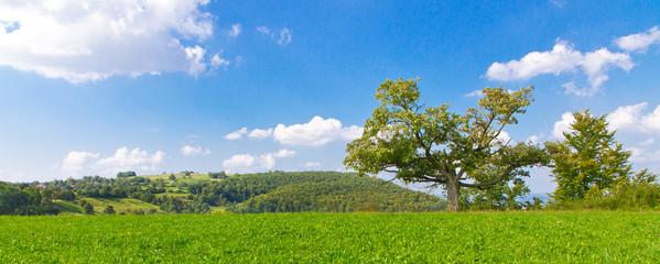 Sommer auf der schwäbischen Alb beim Breitenstein
