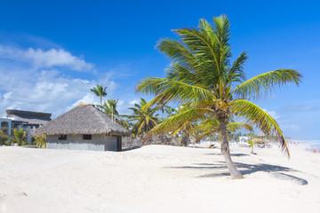 Tropical beach, Punta Cana