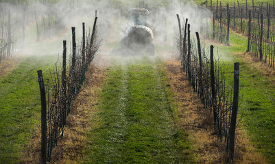 spraying apple orchard