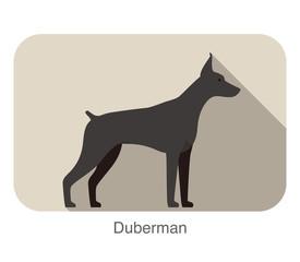 Duberman dog breed standing flat icon design