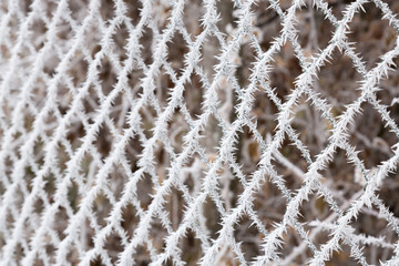 fence in ice